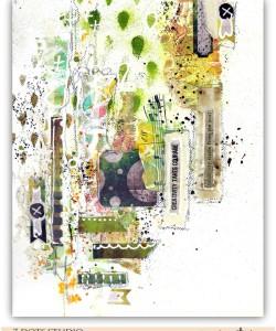 Creativity by Fiona Paltridge