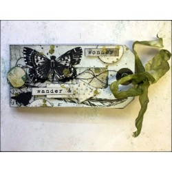 Accordion tag album by Louise Nelson